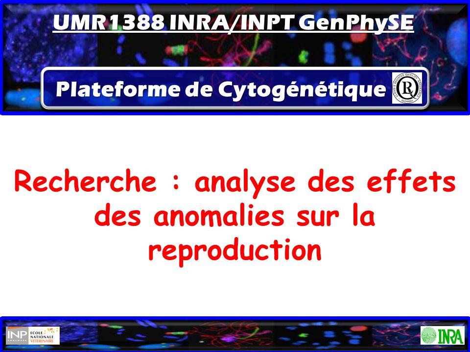 Recherche : analyse des effets des anomalies sur la reproduction