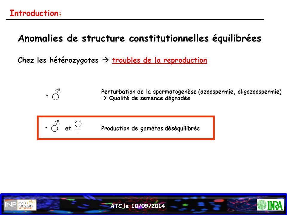 Anomalies de structure constitutionnelles équilibrées