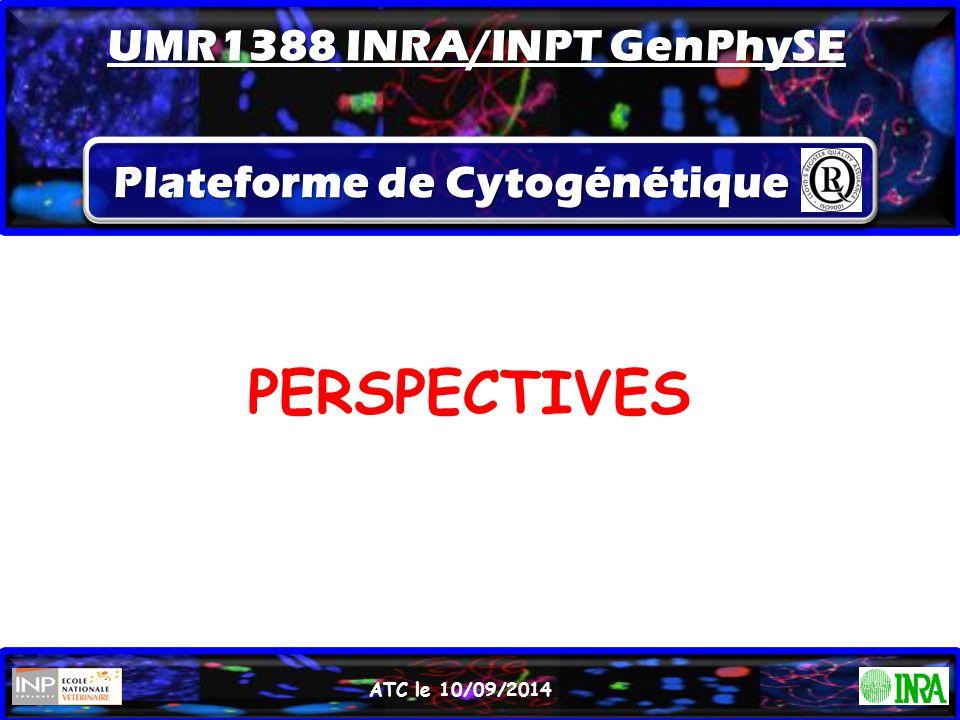 UMR1388 INRA/INPT GenPhySE Plateforme de Cytogénétique