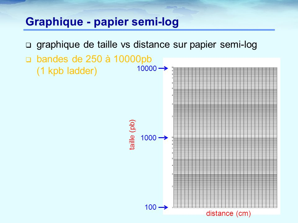 Graphique - papier semi-log
