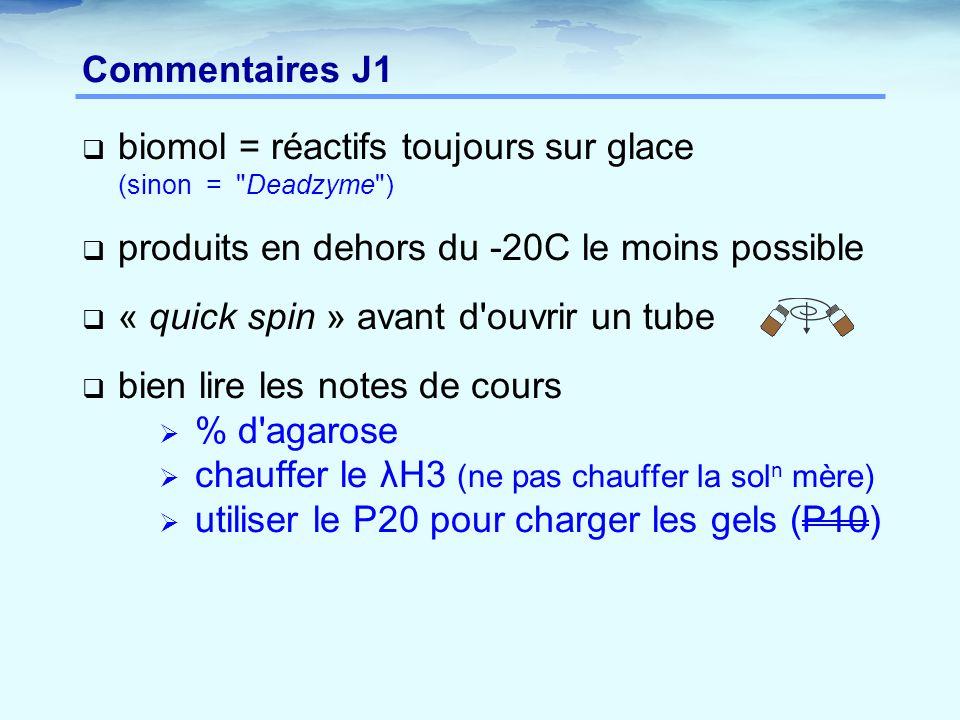 Commentaires J1 biomol = réactifs toujours sur glace (sinon = Deadzyme ) produits en dehors du -20C le moins possible.