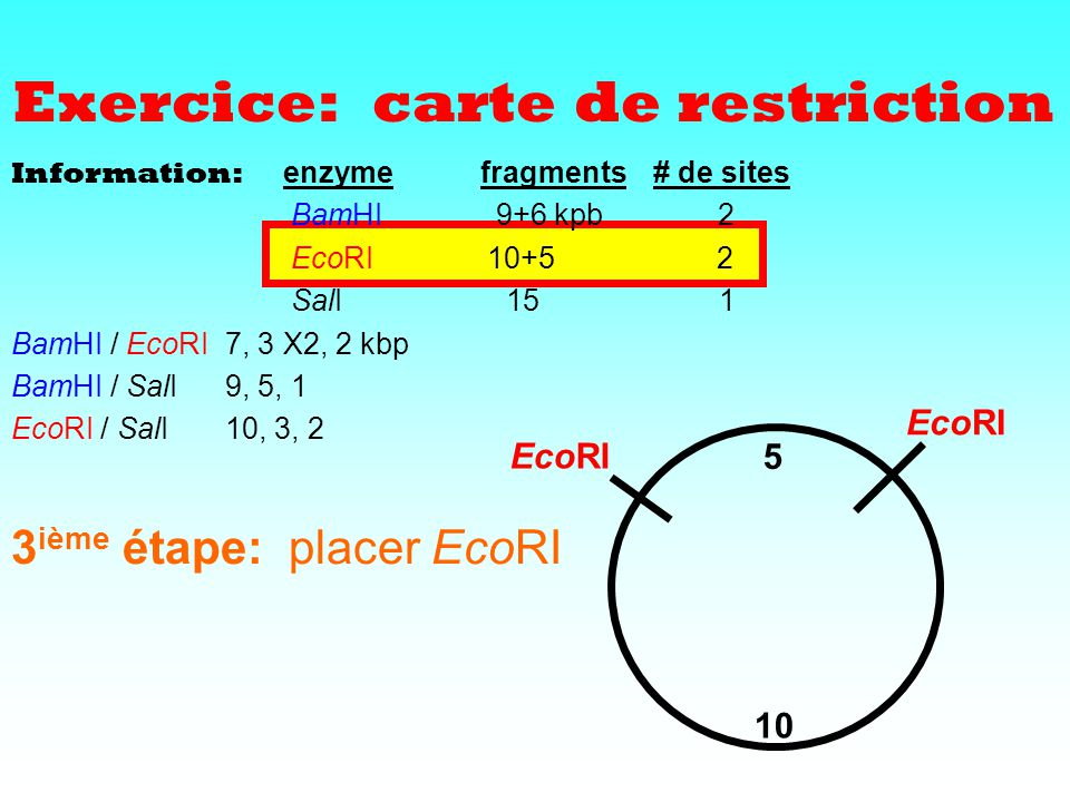 Exercice: carte de restriction