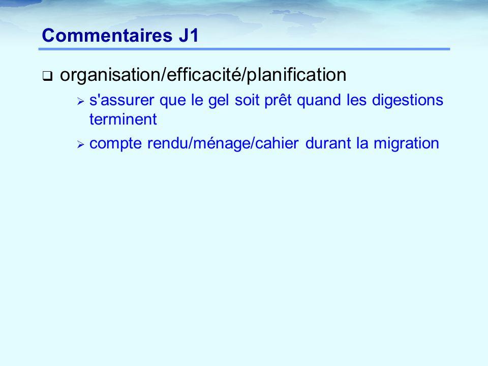 organisation/efficacité/planification