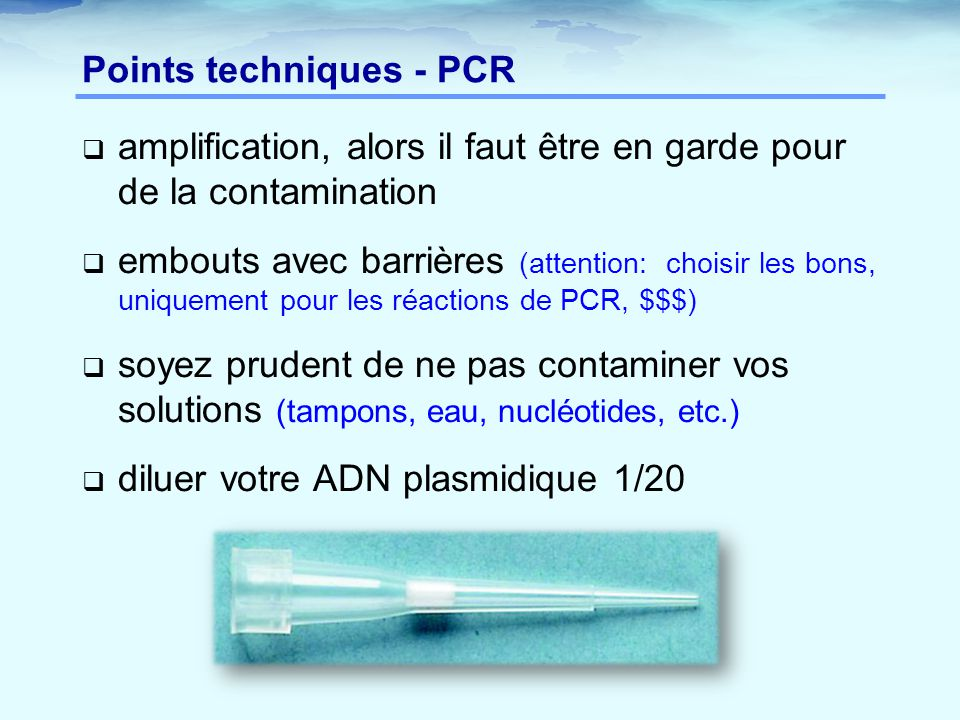 Points techniques - PCR