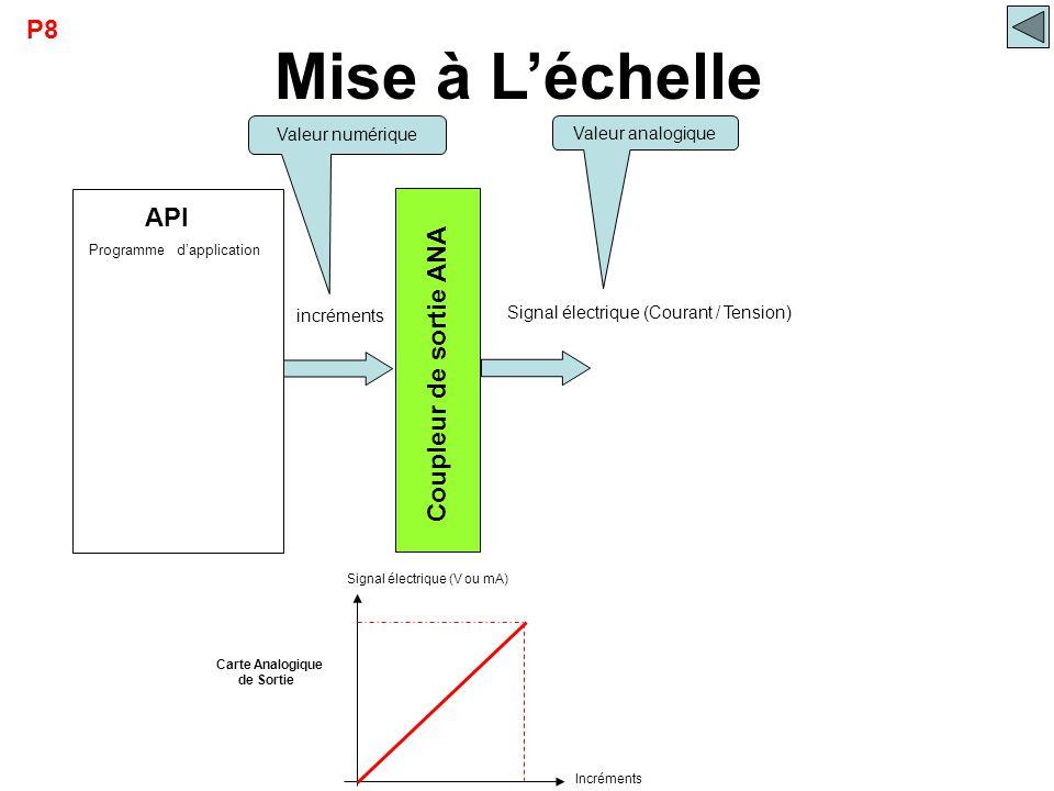Mise à L'échelle P8 API Coupleur de sortie ANA Valeur numérique