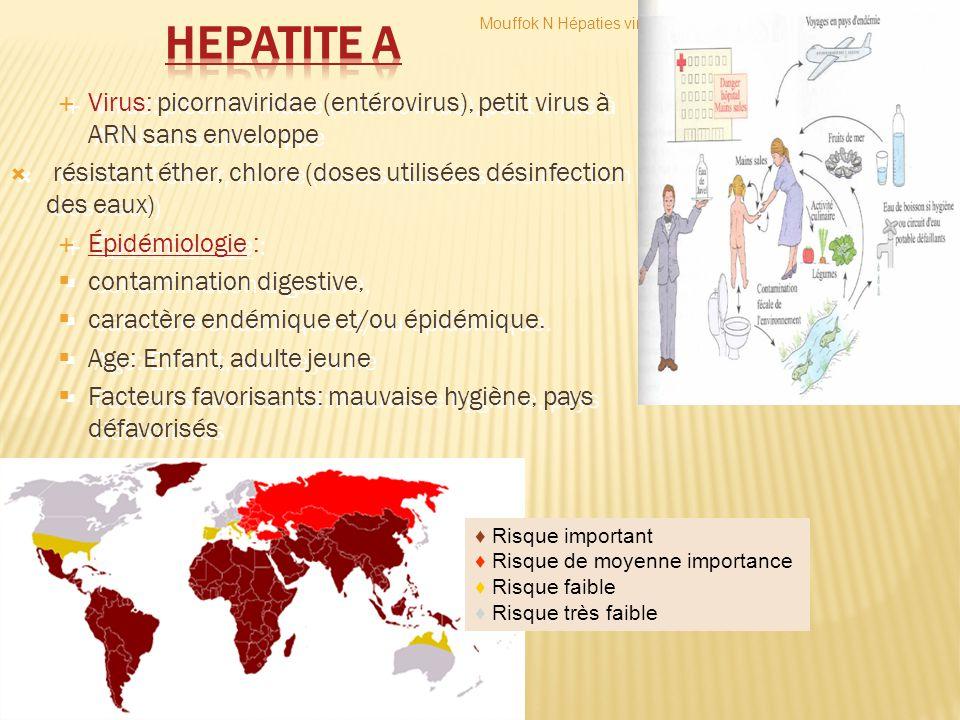 HEPATITE A Mouffok N Hépaties virales. Virus: picornaviridae (entérovirus), petit virus à ARN sans enveloppe.