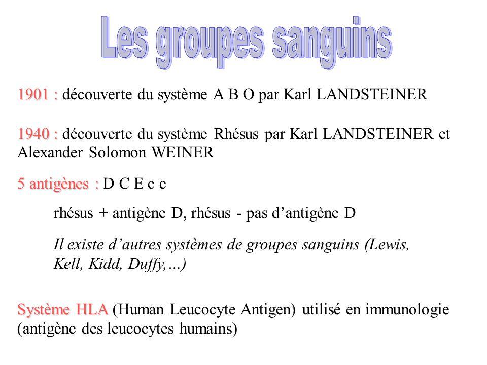 Les groupes sanguins 1901 : découverte du système A B O par Karl LANDSTEINER.