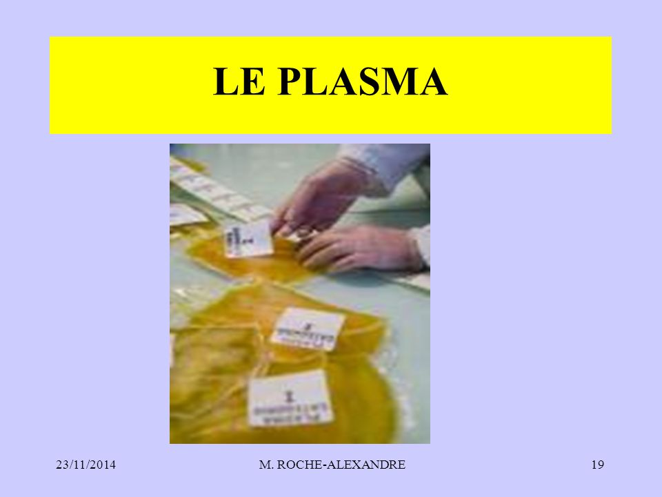 LE PLASMA 07/04/2017 M. ROCHE-ALEXANDRE