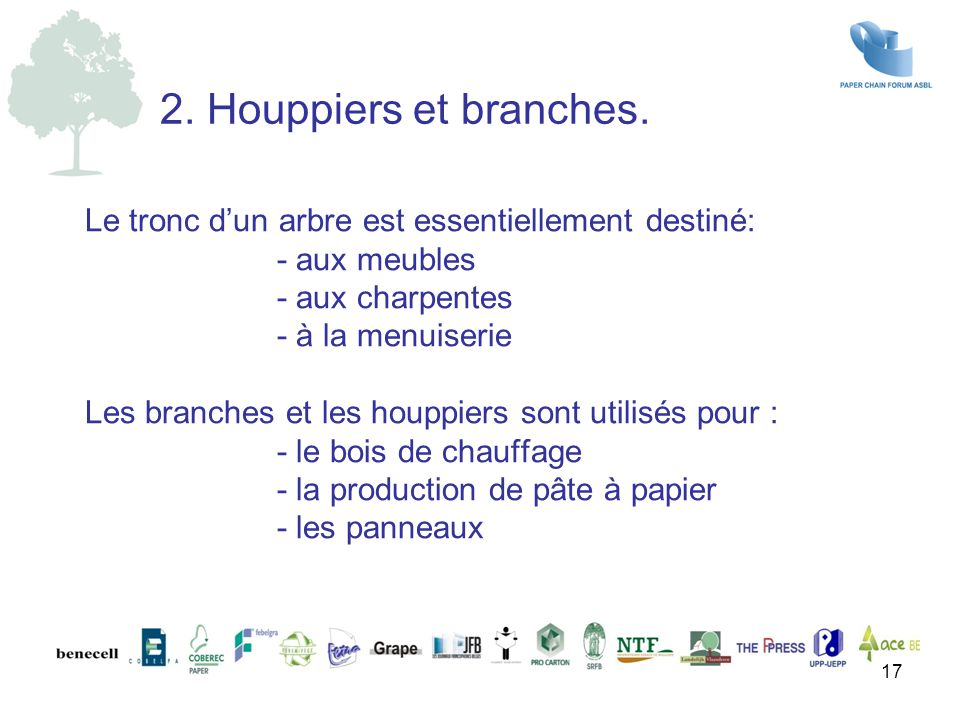2. Houppiers et branches.