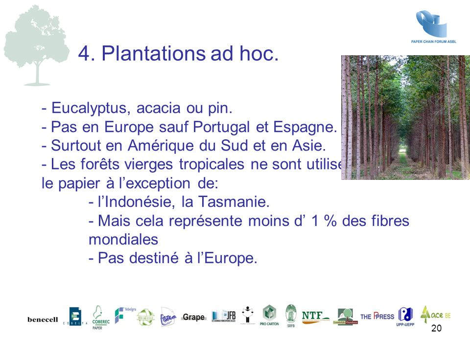 4. Plantations ad hoc.