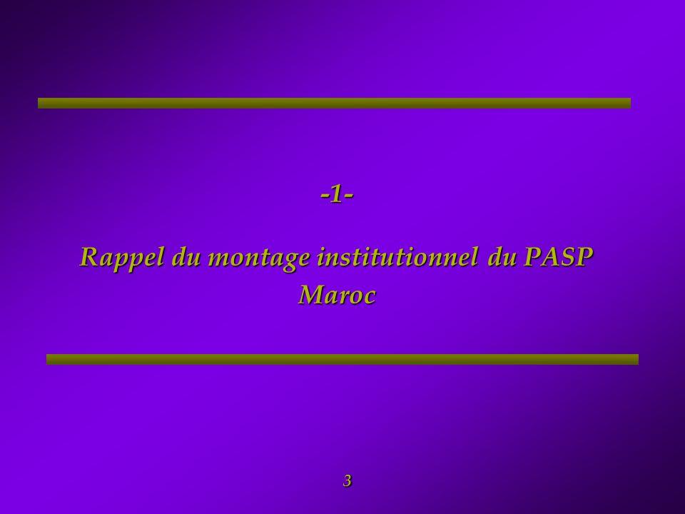 -1- Rappel du montage institutionnel du PASP Maroc