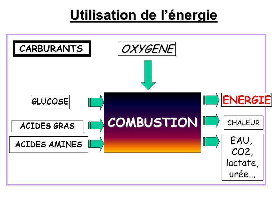 Utilisation de l'énergie