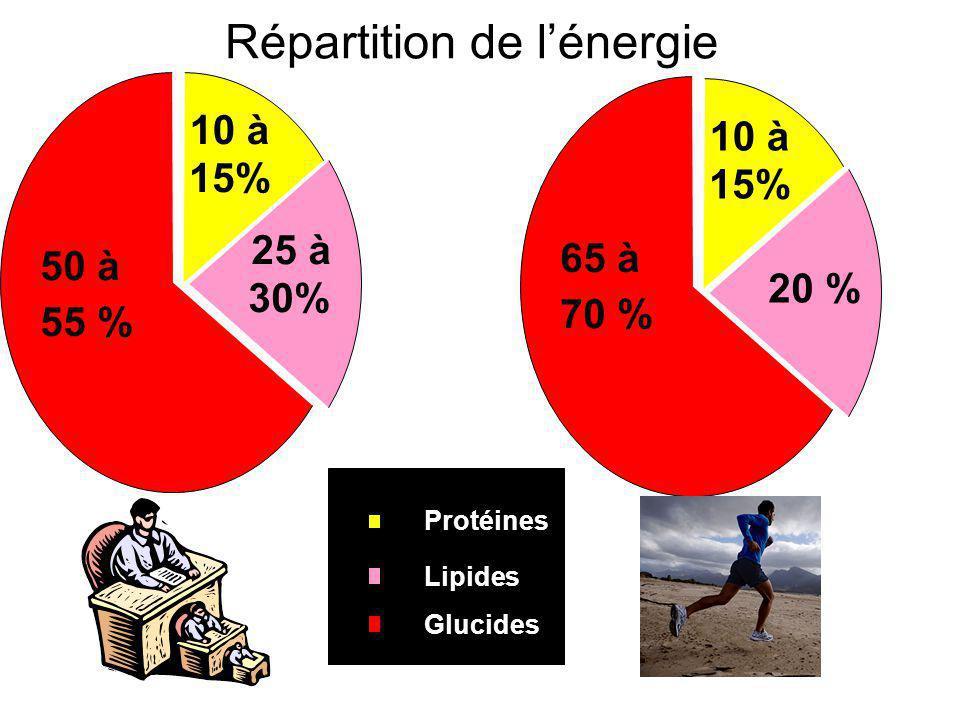 Répartition de l'énergie