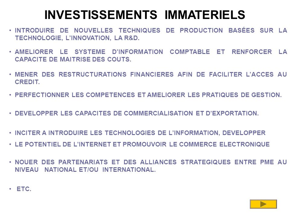 INVESTISSEMENTS IMMATERIELS