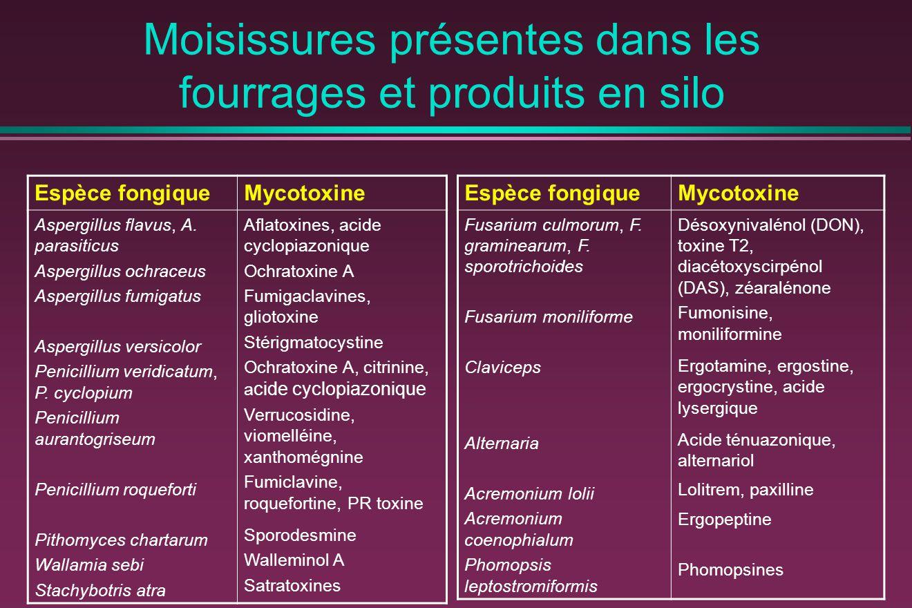 Moisissures présentes dans les fourrages et produits en silo