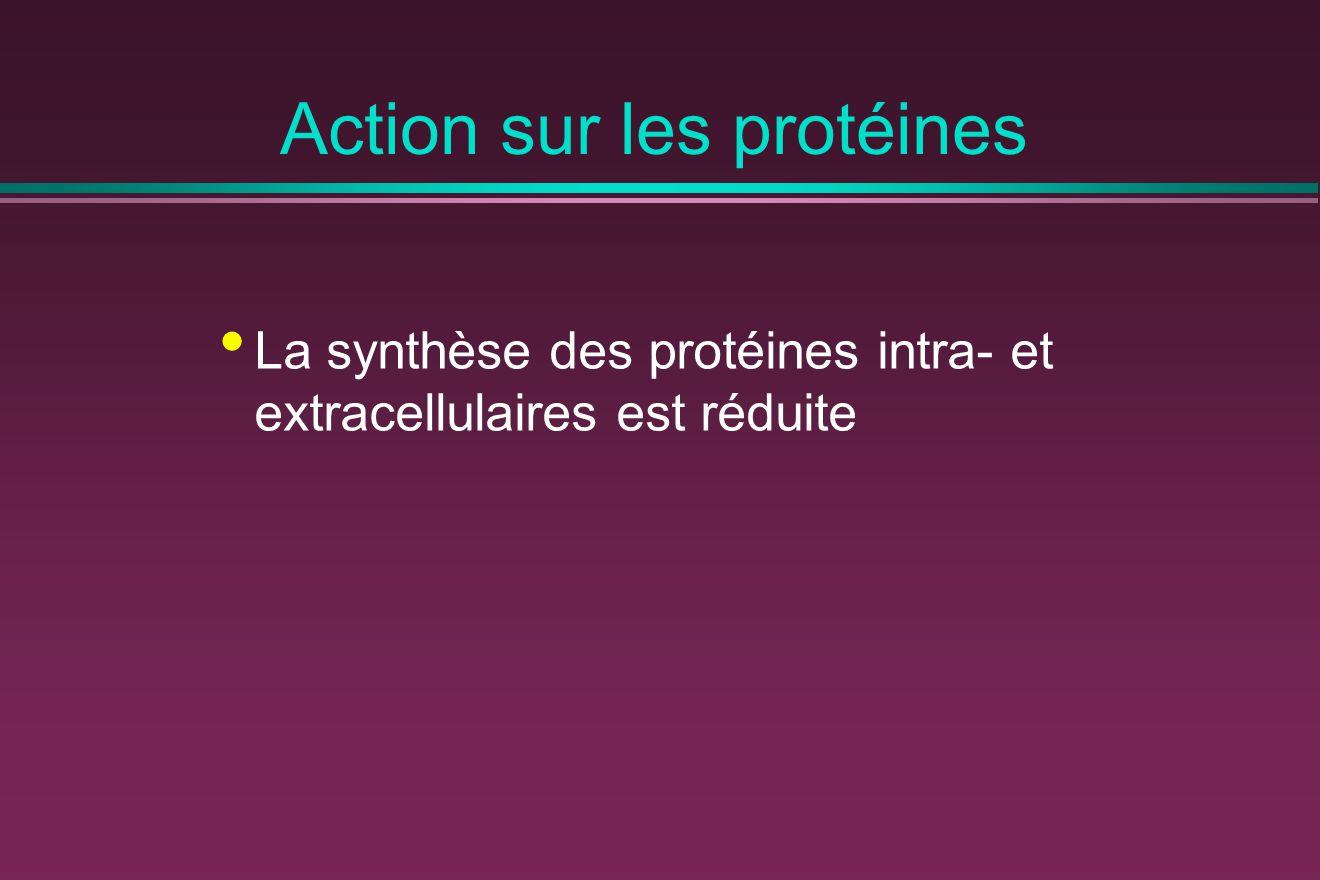 Action sur les protéines