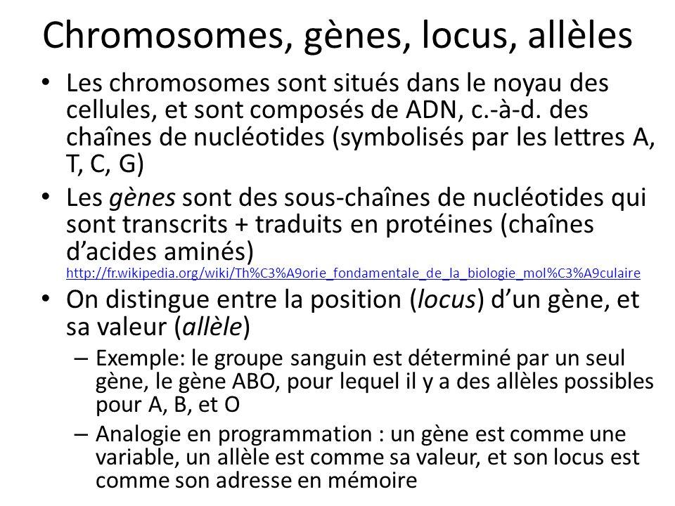 Chromosomes, gènes, locus, allèles