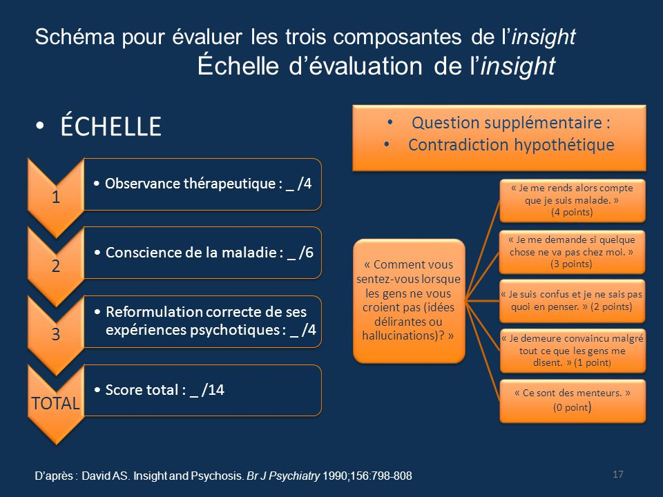 ÉCHELLE Échelle d'évaluation de l'insight