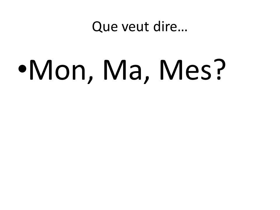 Que veut dire… Mon, Ma, Mes