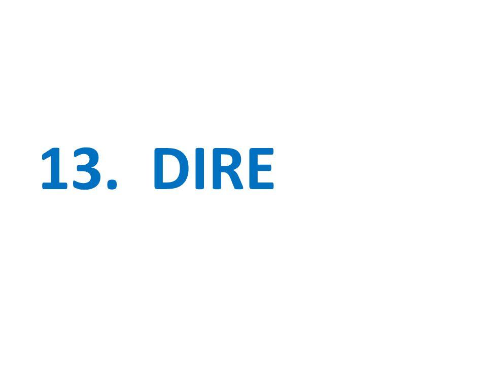 13. DIRE