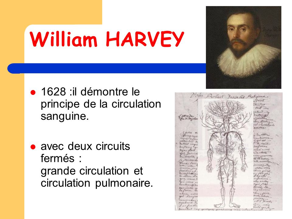 William HARVEY 1628 :il démontre le principe de la circulation sanguine.