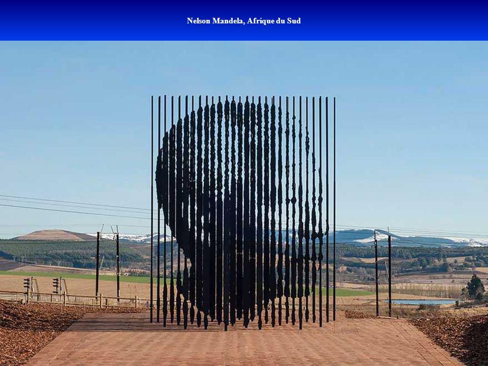 Nelson Mandela, Afrique du Sud