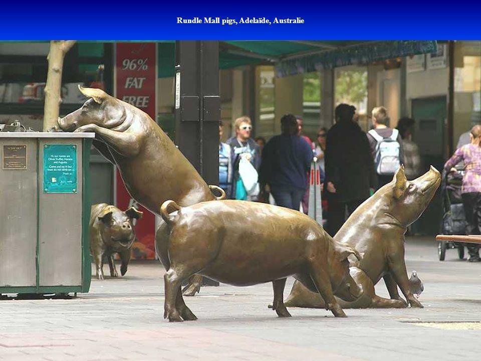 Rundle Mall pigs, Adelaïde, Australie