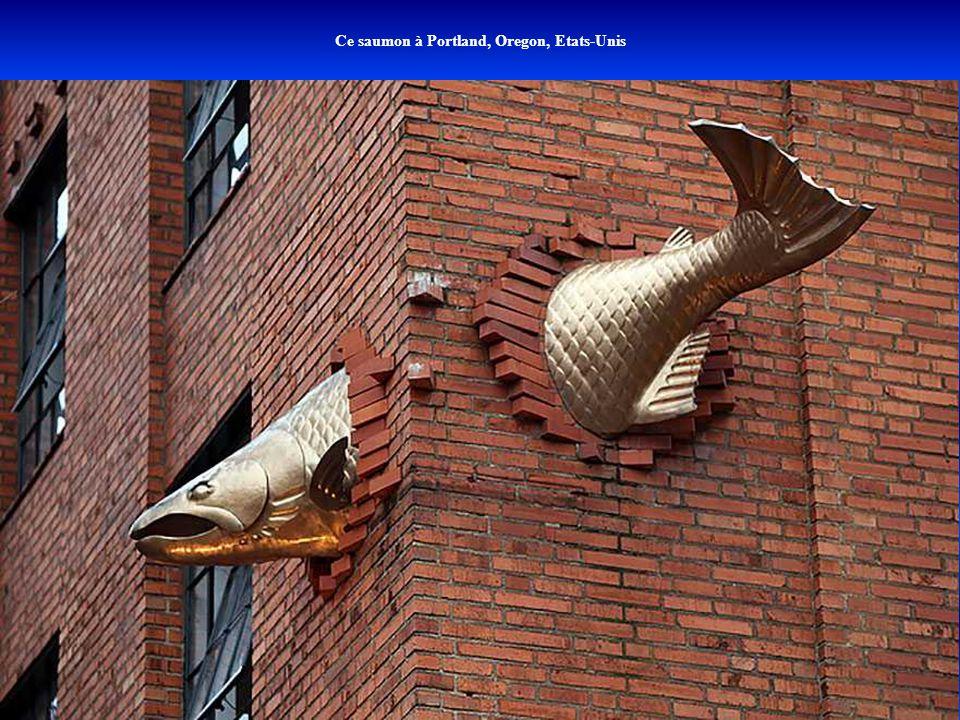 Ce saumon à Portland, Oregon, Etats-Unis