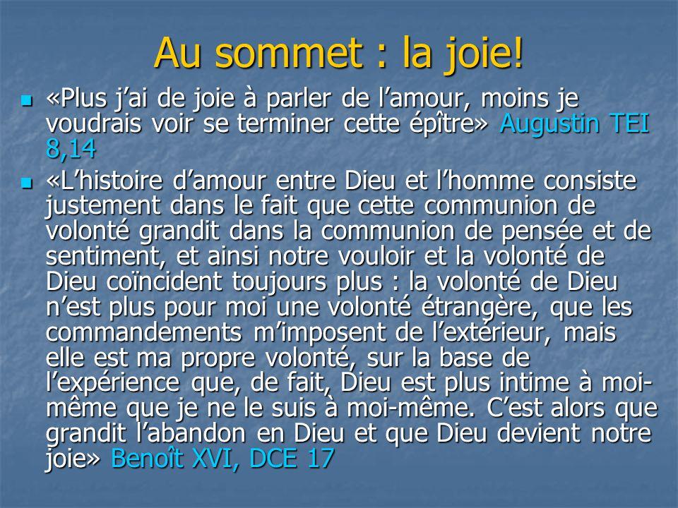 Au sommet : la joie! «Plus j'ai de joie à parler de l'amour, moins je voudrais voir se terminer cette épître» Augustin TEI 8,14.