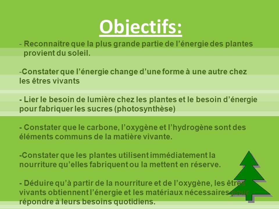 Objectifs: Reconnaitre que la plus grande partie de l'énergie des plantes. provient du soleil.