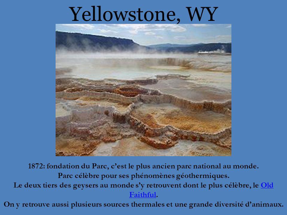 Yellowstone, WY 1872: fondation du Parc, c'est le plus ancien parc national au monde. Parc célèbre pour ses phénomènes géothermiques.