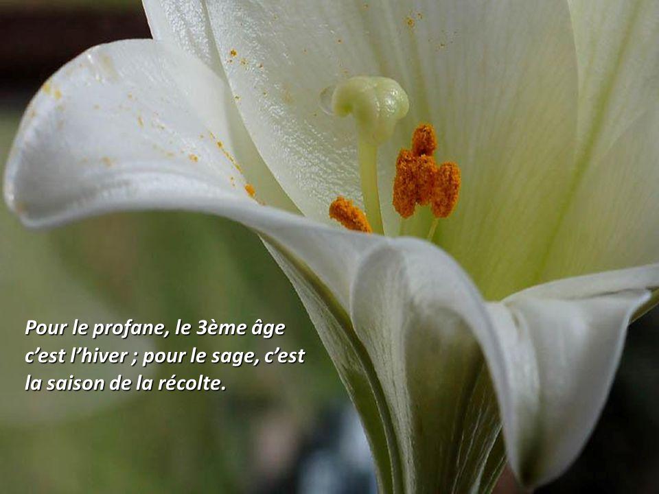 Pour le profane, le 3ème âge c'est l'hiver ; pour le sage, c'est la saison de la récolte.
