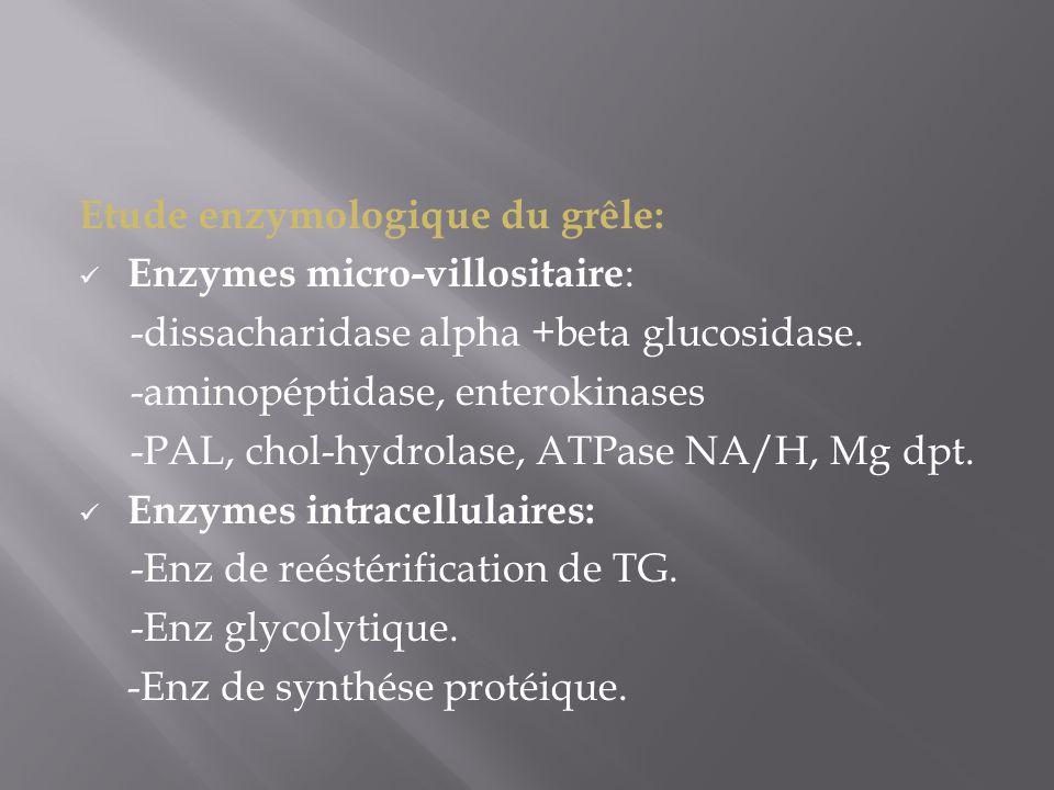 Etude enzymologique du grêle:
