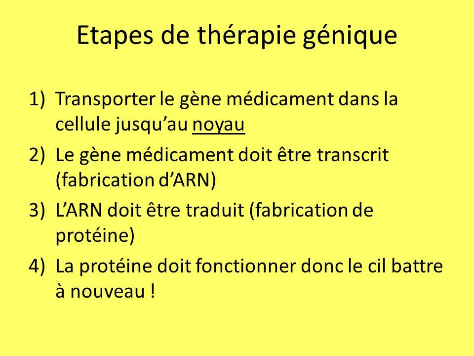 Etapes de thérapie génique
