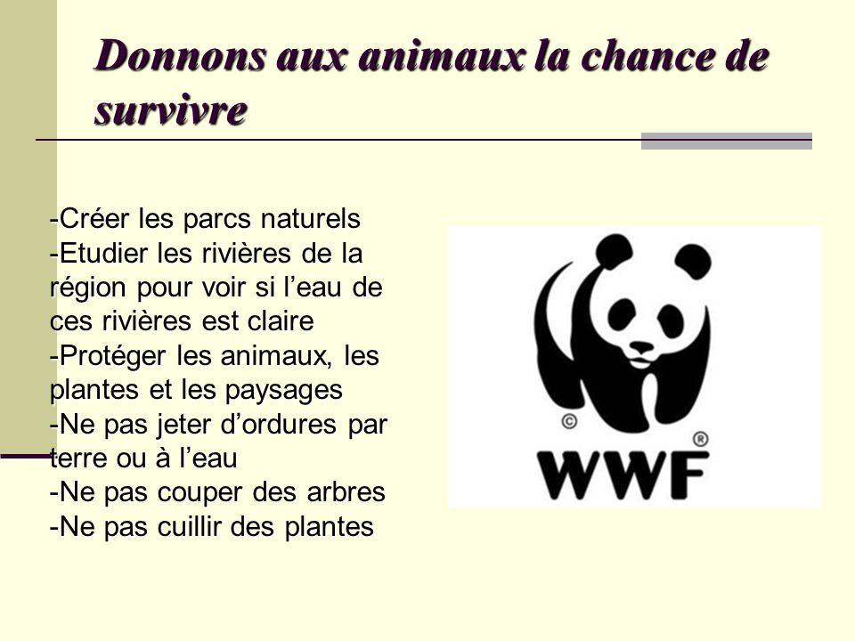 Donnons aux animaux la chance de survivre