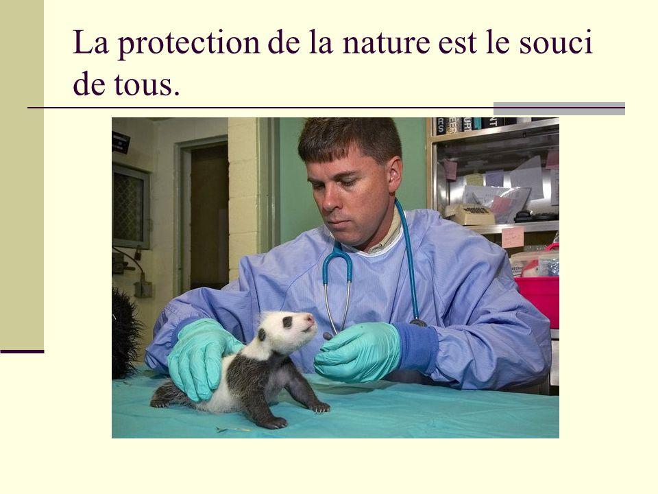 La protection de la nature est le souci de tous.