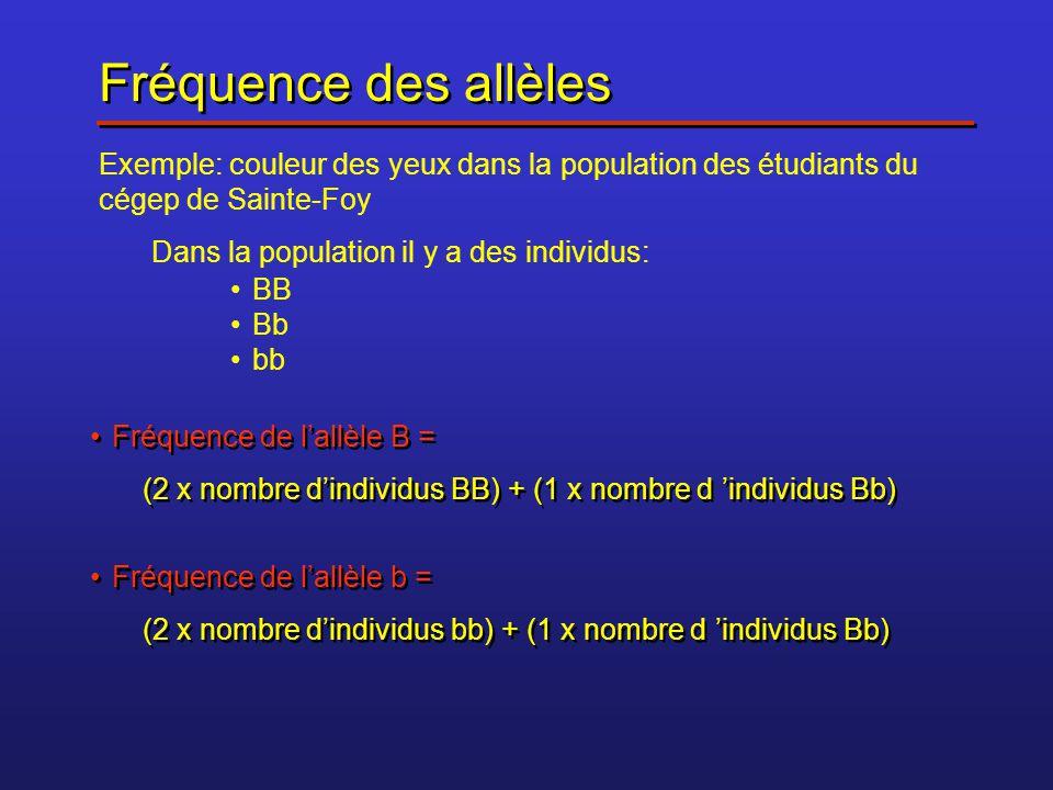 Fréquence des allèles Exemple: couleur des yeux dans la population des étudiants du cégep de Sainte-Foy.