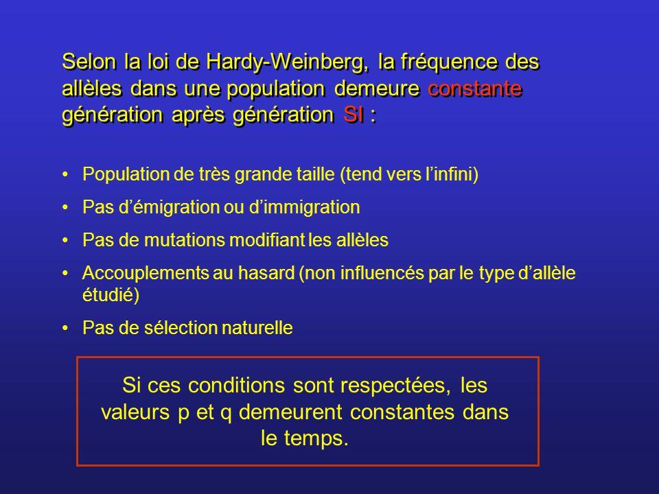 Selon la loi de Hardy-Weinberg, la fréquence des allèles dans une population demeure constante génération après génération SI :