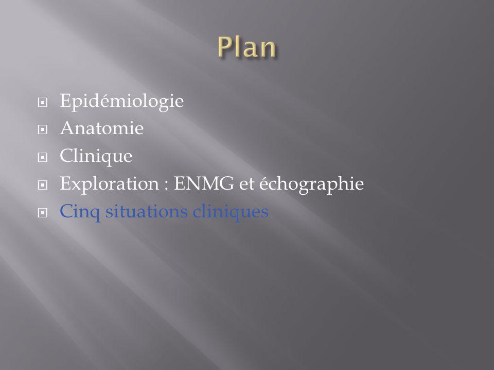 Plan Epidémiologie Anatomie Clinique Exploration : ENMG et échographie