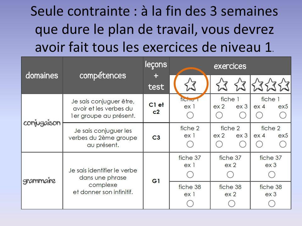 Seule contrainte : à la fin des 3 semaines que dure le plan de travail, vous devrez avoir fait tous les exercices de niveau 1.