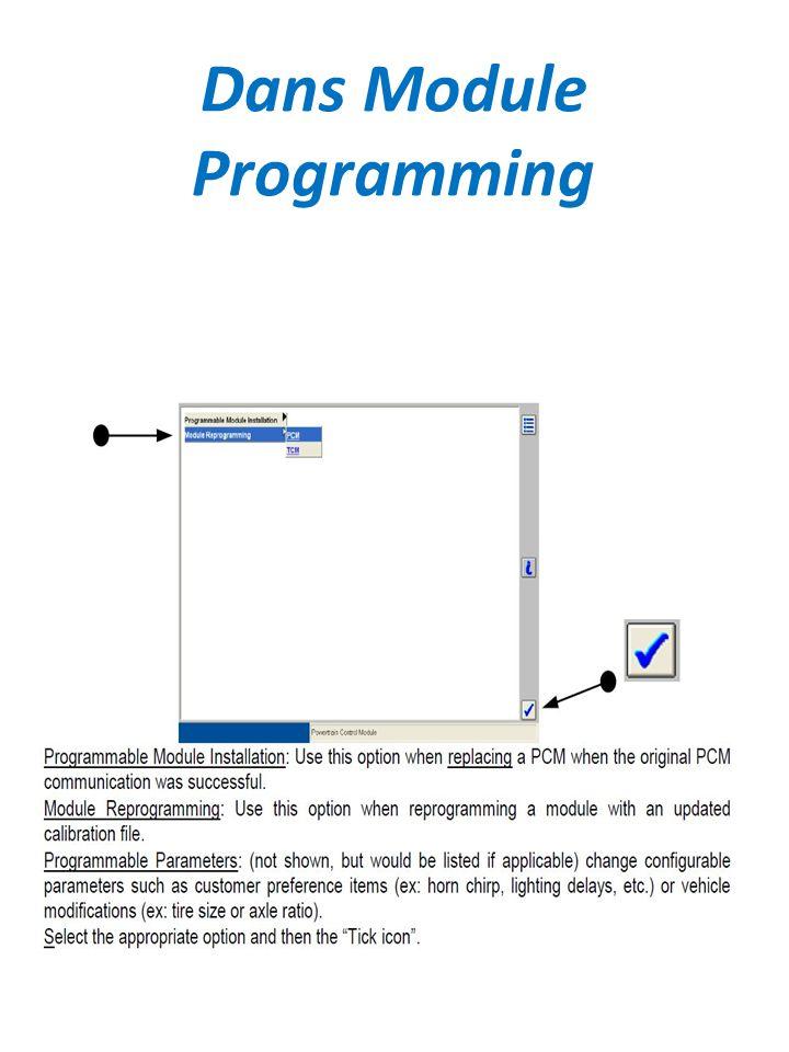 Dans Module Programming