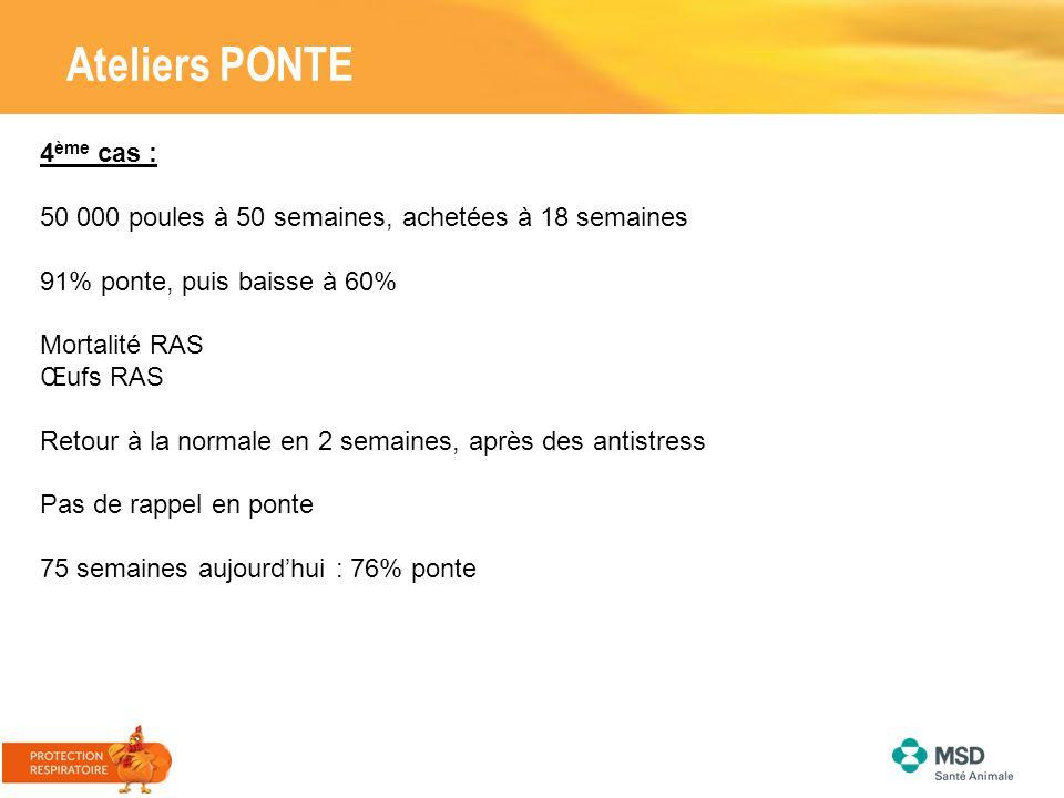 Ateliers PONTE 4ème cas :
