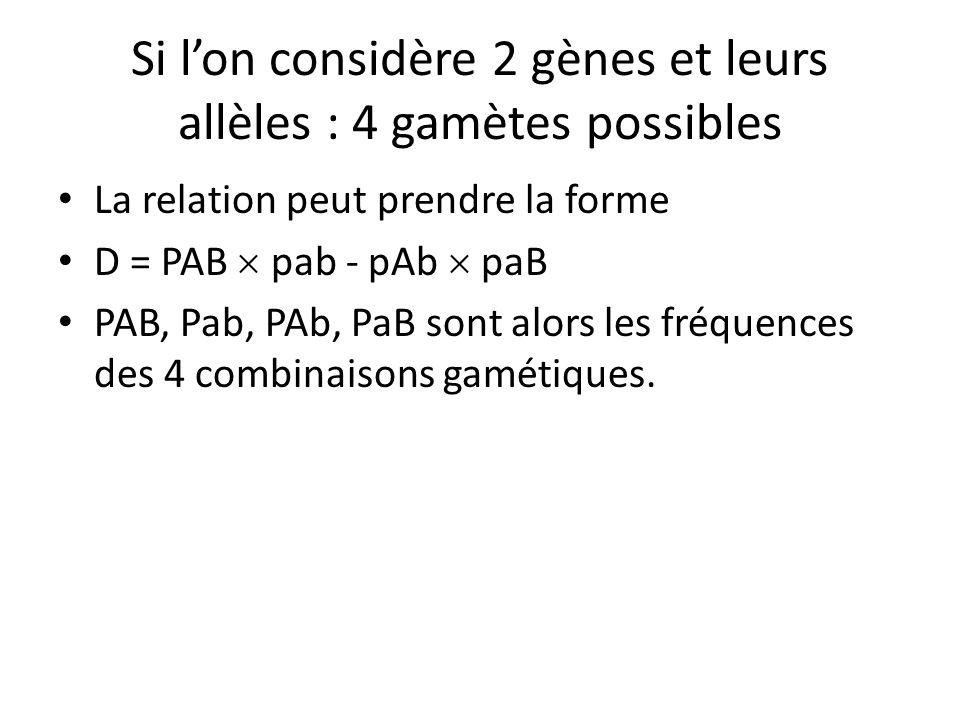 Si l'on considère 2 gènes et leurs allèles : 4 gamètes possibles