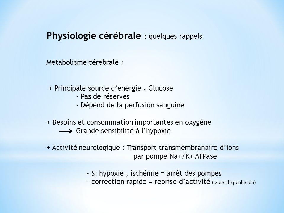 Physiologie cérébrale : quelques rappels