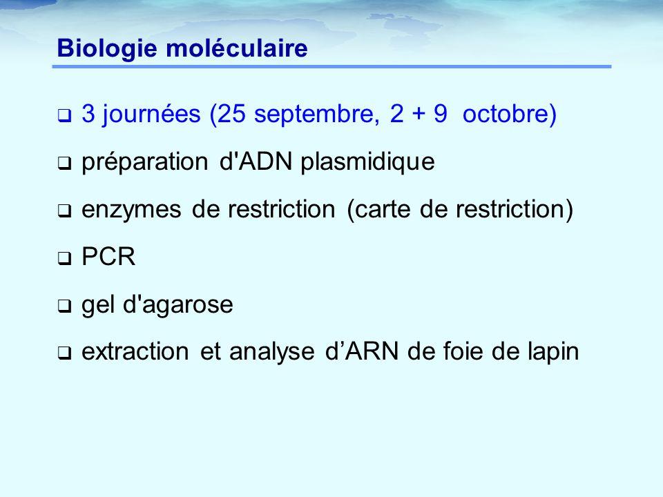 Biologie moléculaire 3 journées (25 septembre, 2 + 9 octobre) préparation d ADN plasmidique. enzymes de restriction (carte de restriction)