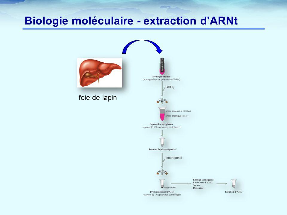 Biologie moléculaire - extraction d ARNt