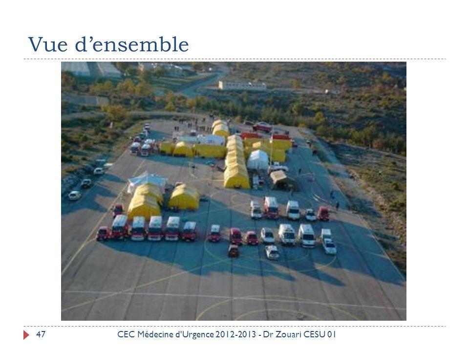 Vue d'ensemble CEC Médecine d Urgence 2012-2013 - Dr Zouari CESU 01