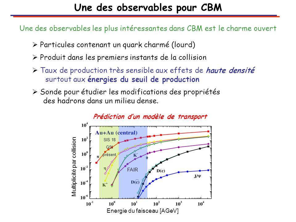 Une des observables pour CBM