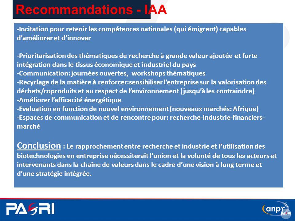 Recommandations - IAA -Incitation pour retenir les compétences nationales (qui émigrent) capables d'améliorer et d'innover.