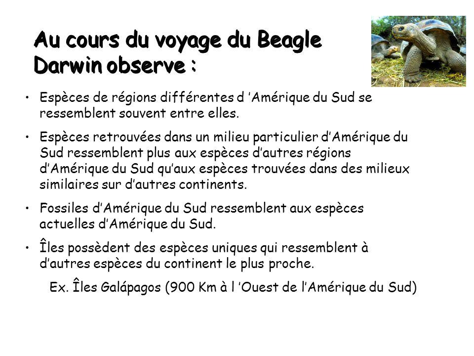 Au cours du voyage du Beagle Darwin observe :